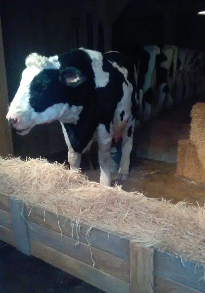 bessie the animatronic cow